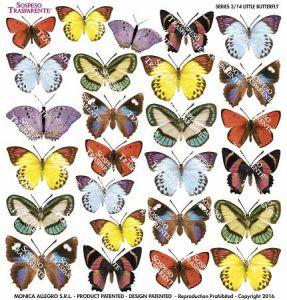 Pellicola Stampata Modellabile - Series 3/14 - LITTLE BUTTERFLY - Farfalle Piccole - Sospeso Trasparente