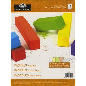 Pastel Artist Pad - Blocco da disegno per Pastelli - 12 fogli in 5 colorazioni - 22,9 x 30,5 cm - 180 g - art. RD356 - Royal & Langnickel